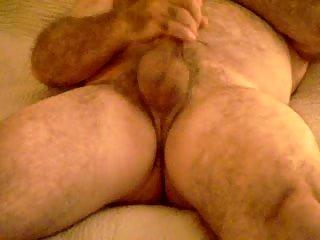 Fat Bear Masturbation