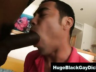 Gay big black cock interracial cock suck
