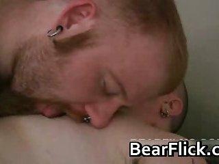 Ashby Red and Dakotah Porter bears clip