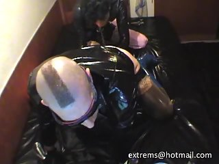 Latex Studs Enjoy Sucking & Licking