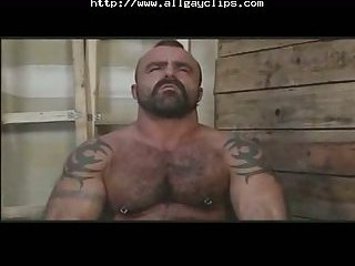 Massive Musclebear Has Fun With Gloryhole