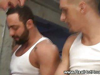 Males s pleasure