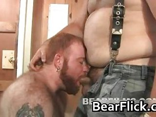 Ashby Red and Nate Wolf gay bears sucking cock