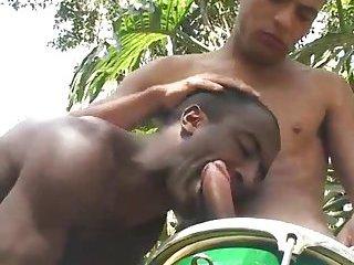 Hot Latinos Outdoor Sucking & Fucking