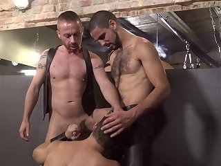 Nico Lust, Ashley Ryder & Alexx Stier.