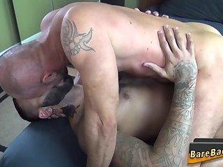 Bear rides cock bareback