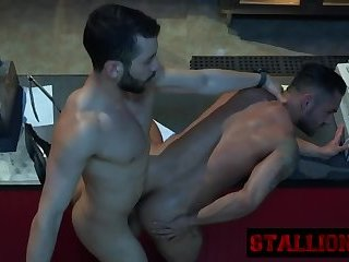 Stallion gets mouth and asshole stuffed by cock