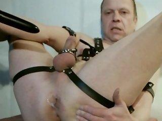 Joe Lee in harness