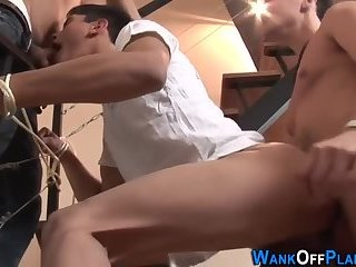 Everyone Wants To acquire Into This cocks Holes