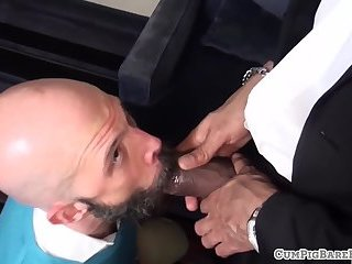 Cockhungry bear deepthroats on his knees