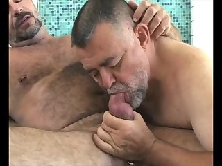 Two older Bears bang