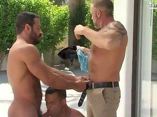 David Benjamin,   Dallas Steele  & Vinnie Stefano
