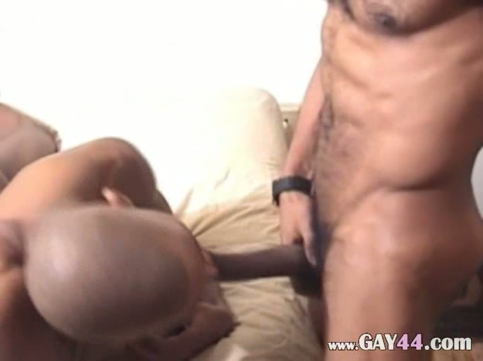 Black cocks fucking white pussy