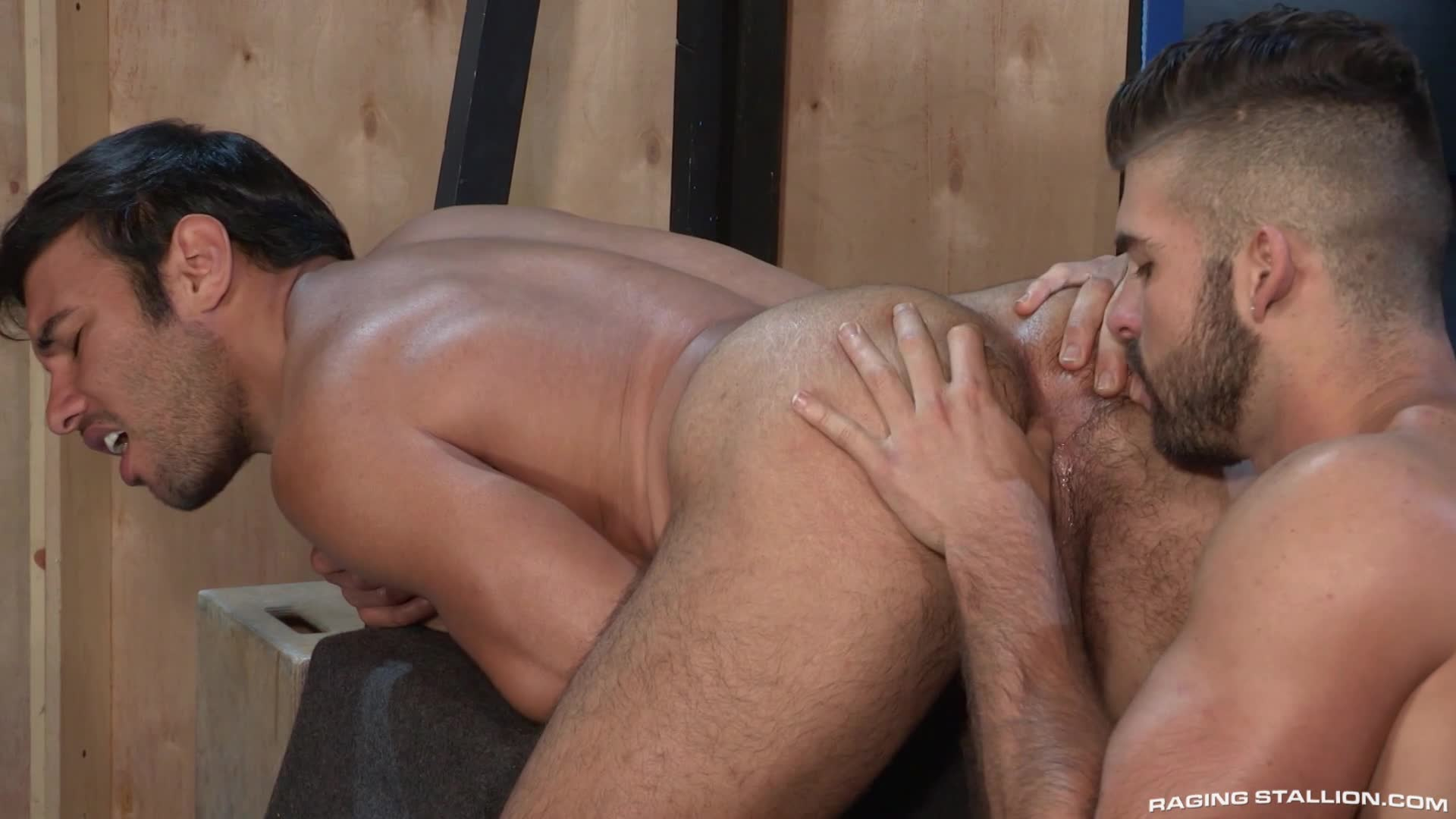 two gay scalies give you a wet sloppy blowjob