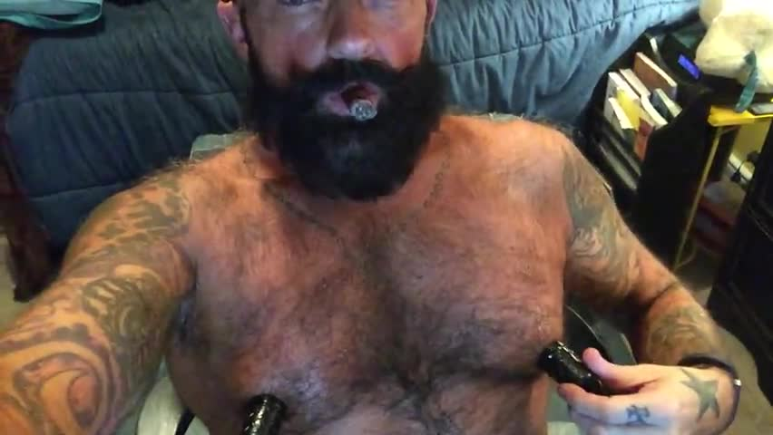 Cigar Bear And His Hot Dick Nips