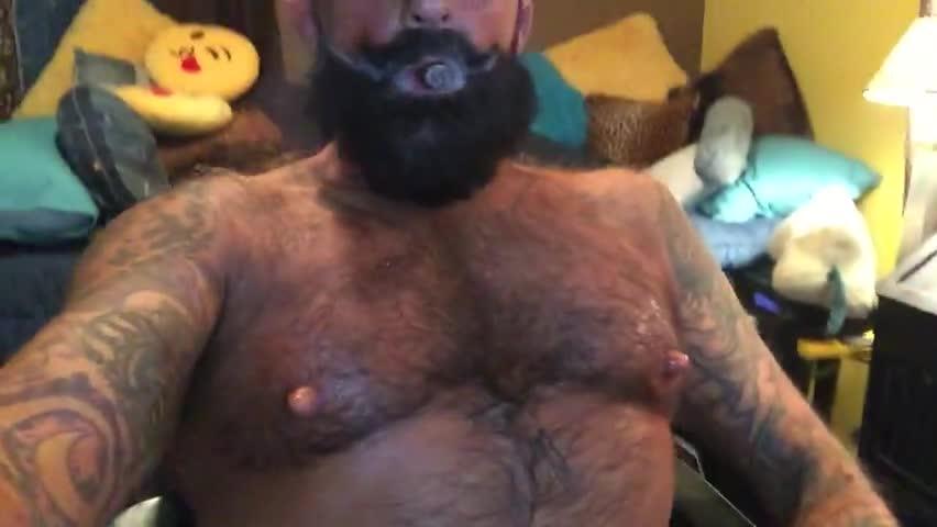 Bear cock cigar