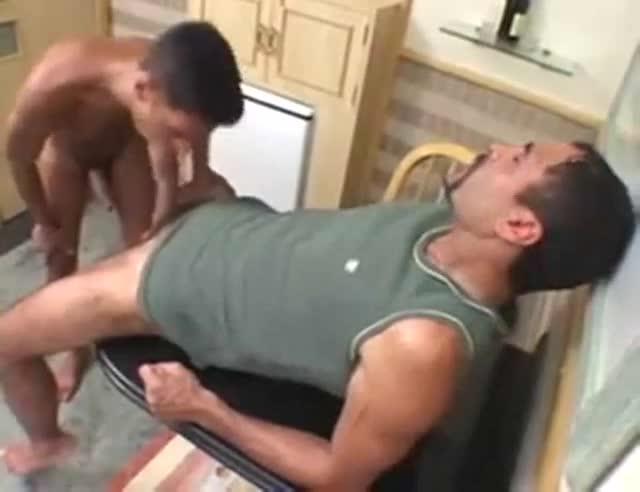 Palatable gayboys plough